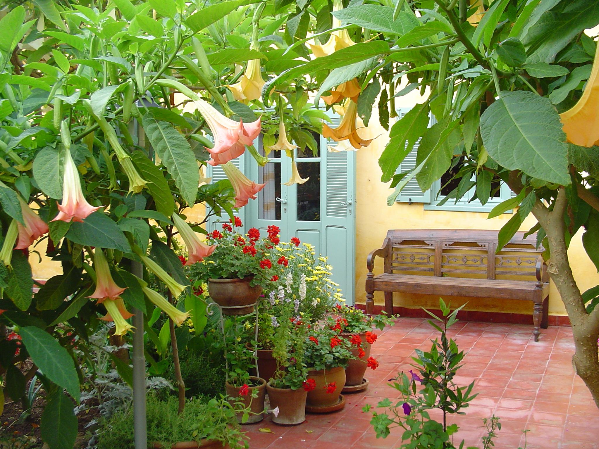Dar beldi maison d h tes oualidia dar beldi oualidia for Jardin fleuri maison
